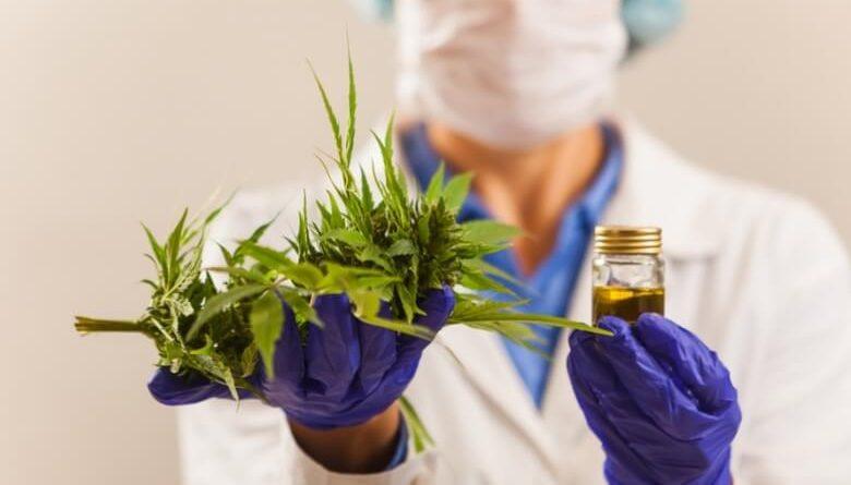 Fabricação e venda de medicamentos à base de Cannabis são aprovadas pela Anvisa