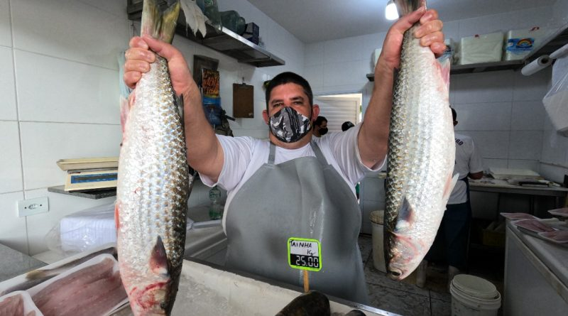 Caraguatatuba: Pescadores aprovam ações da prefeitura e agradecem apoio do prefeito Aguilar Junior ao setor